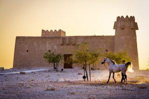 Hadidy-Al-Shaqab