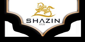 Shazin Stud Logo